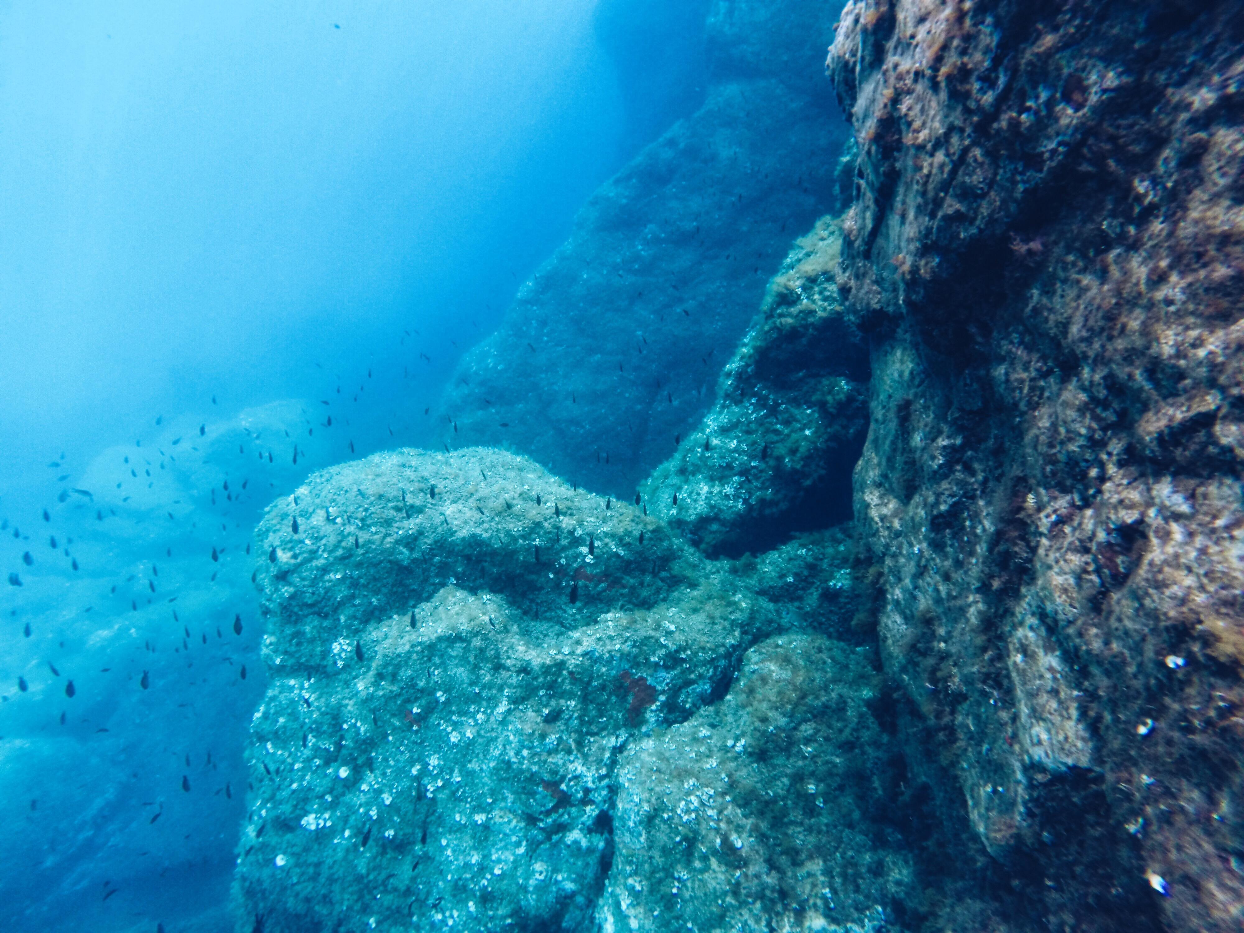 Balade sur l'eau et sous l'eau avec Dune La Londe