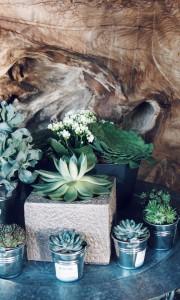 my-shop-by-vues-du-jardin-décoration-shop