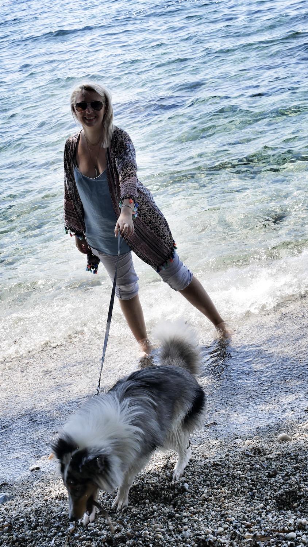 astuces anti chaleur pour son chien