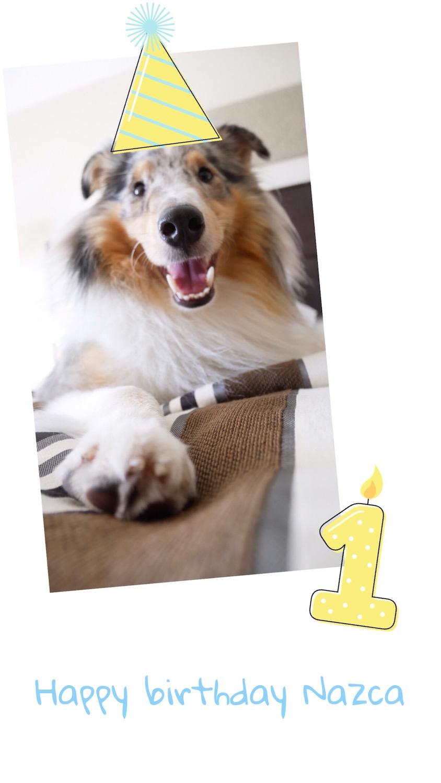 Un anniversaire qui a du chien