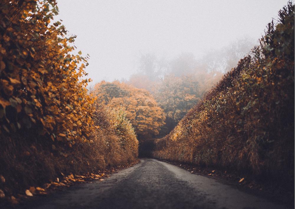Automne : bien vivre le changement de saison
